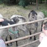 zustrich-janov-2011-00074